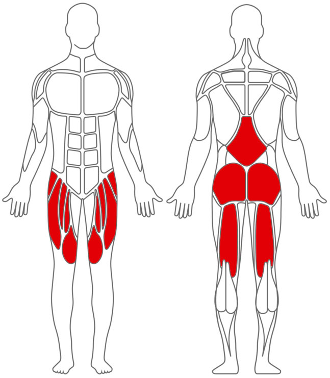 low carb diät muskelaufbau